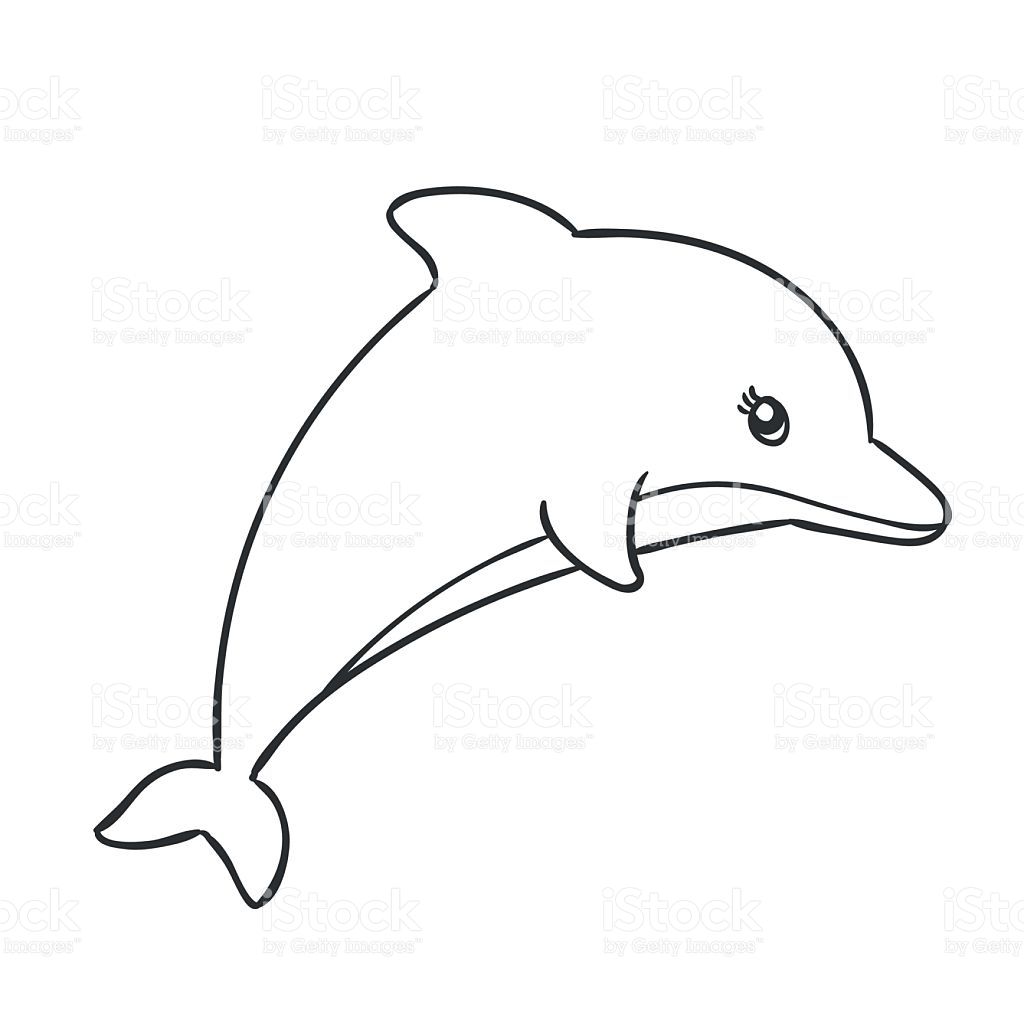1024x1024 cartoon dolphin drawing and cartoon dolphin drawing dolphin