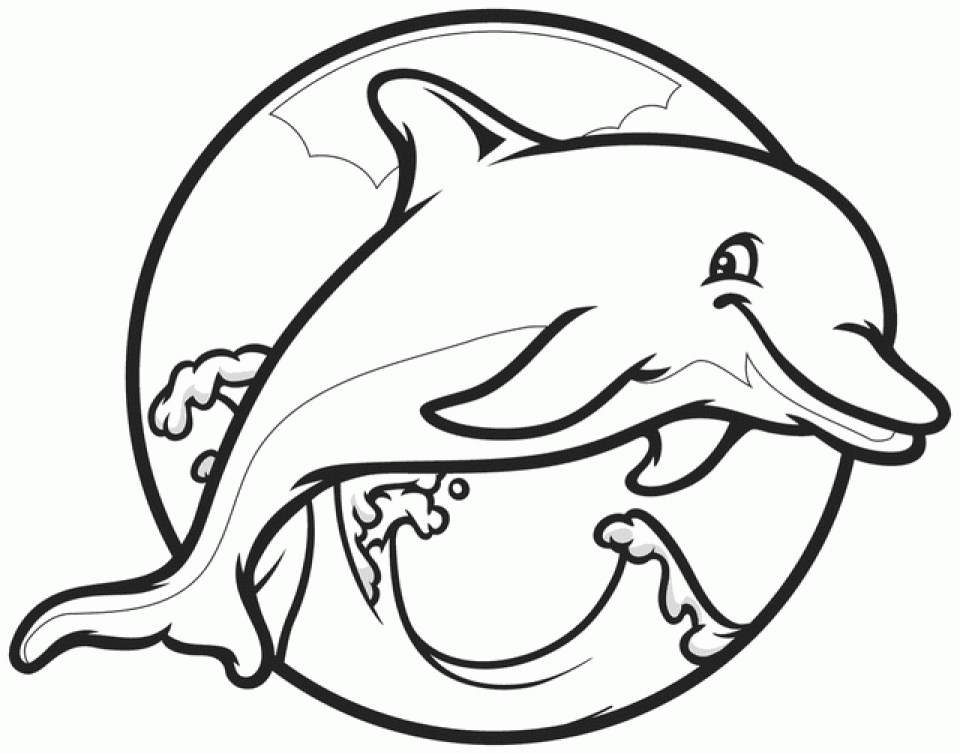 Dolphin Drawing For Kids