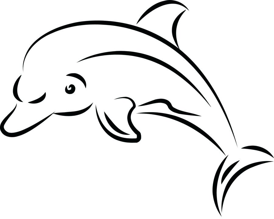 900x720 easy to draw dolphin draw dolphin easy way to draw dolphin face
