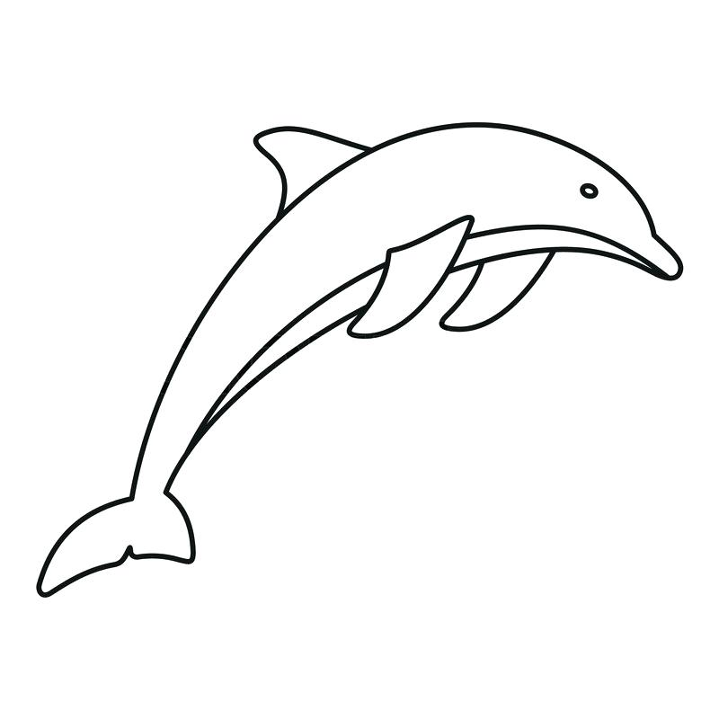 800x800 dolphin outline images dolphin outline on white background dolphin