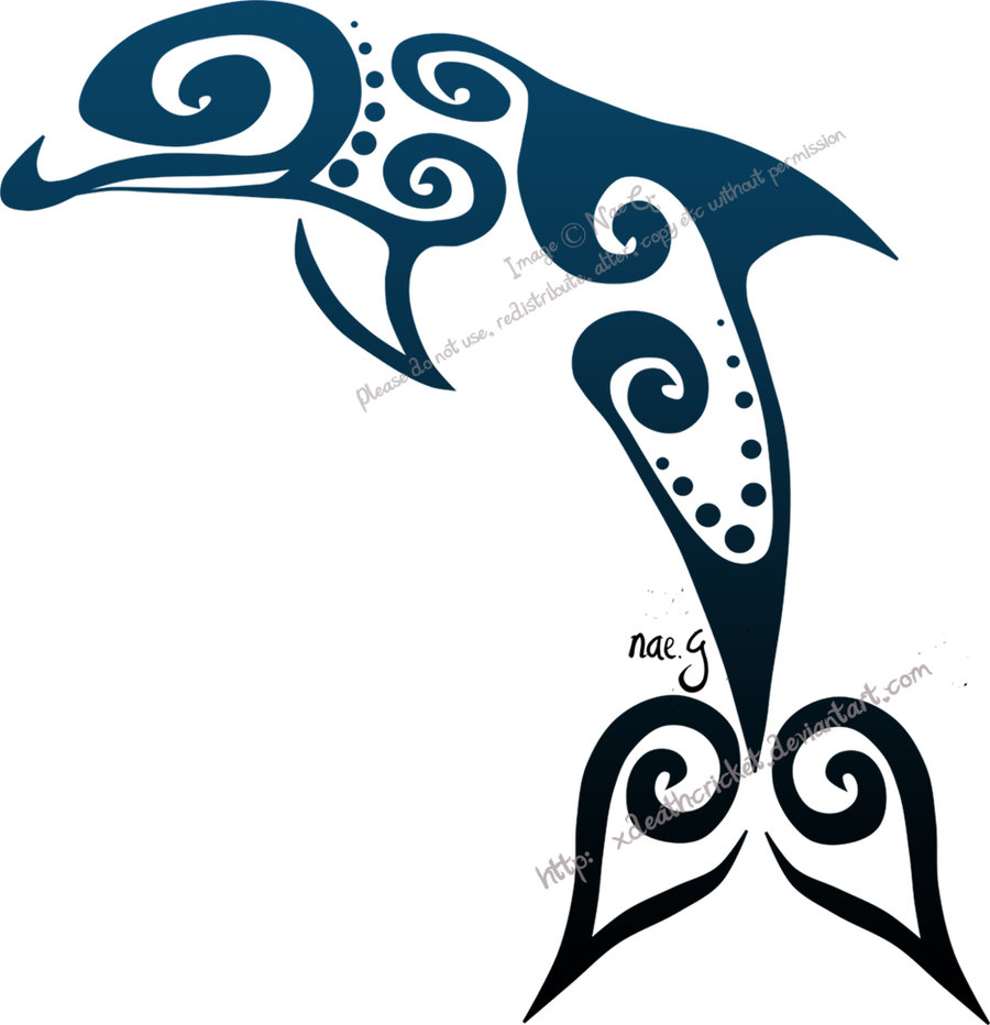 900x932 Dolphin Tattoo Drawings