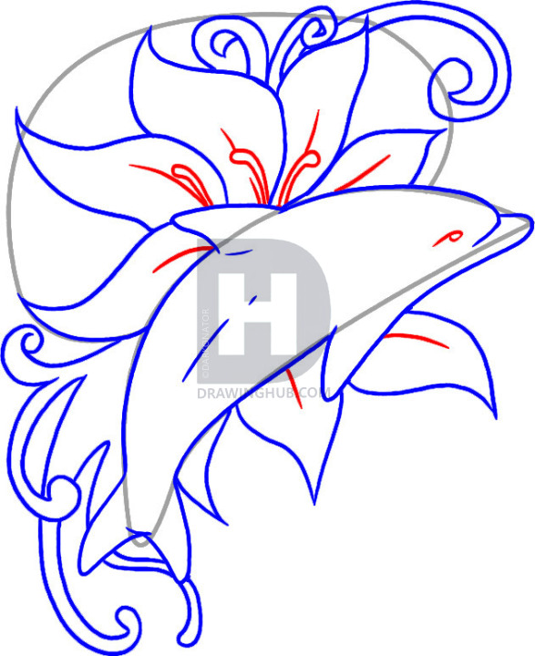 587x720 How To Draw A Dolphin Tattoo, Step
