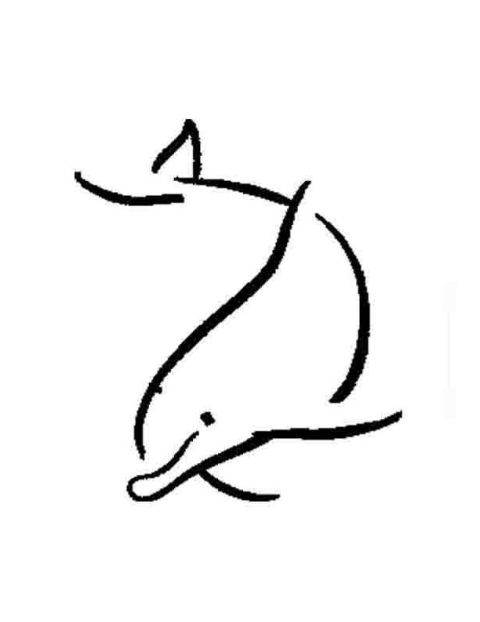 480x622 Dolphin Tattoo Sketch