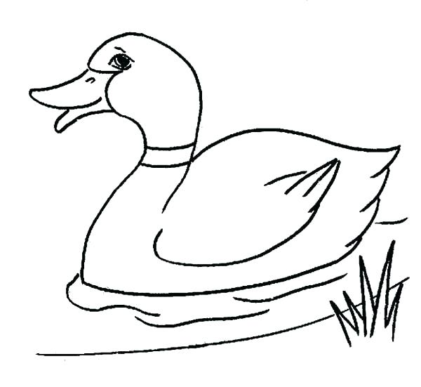Donald Duck Line Drawing