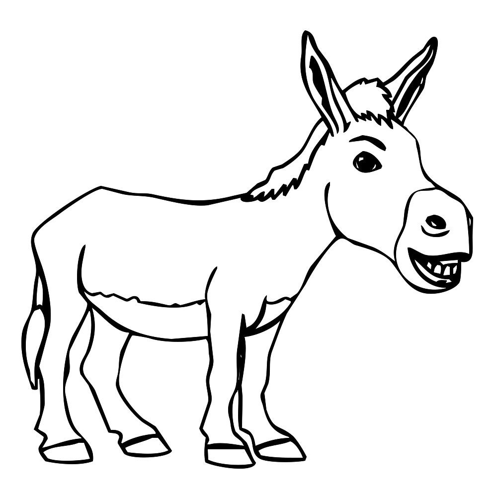 1000x1000 Donkey Drawing Cool For Free Download