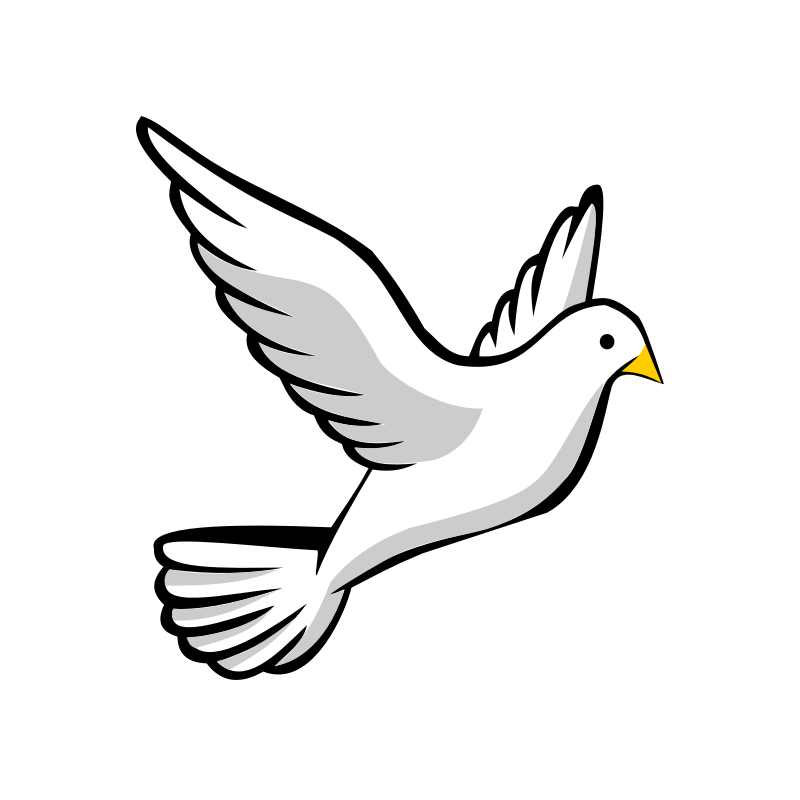 Dove Drawing Outline | Free download best Dove Drawing
