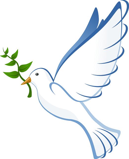 Dove In Flight Drawing