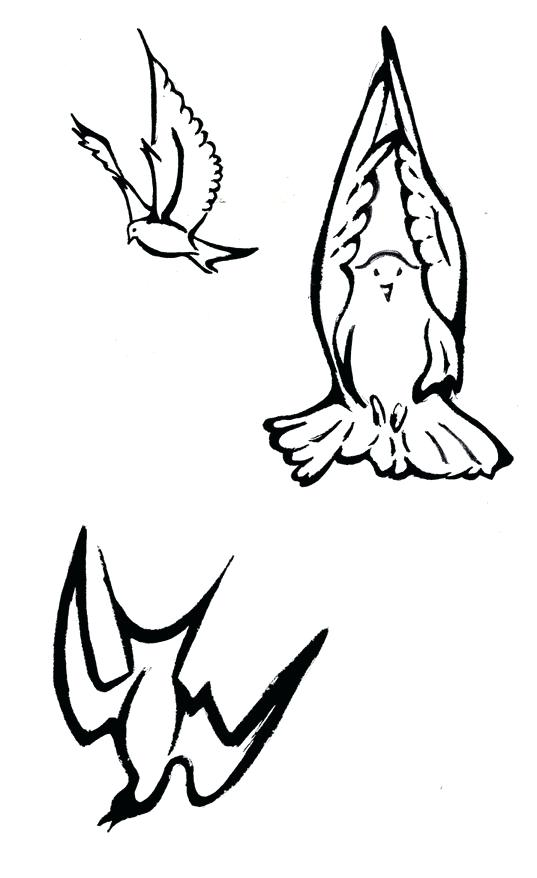 537x878 Dove Drawing Outline At Free For Personal Use Holy Spirit Images