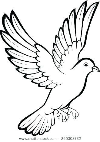 330x470 bird outlines vector art graphics bird outlines dove tattoo outlines