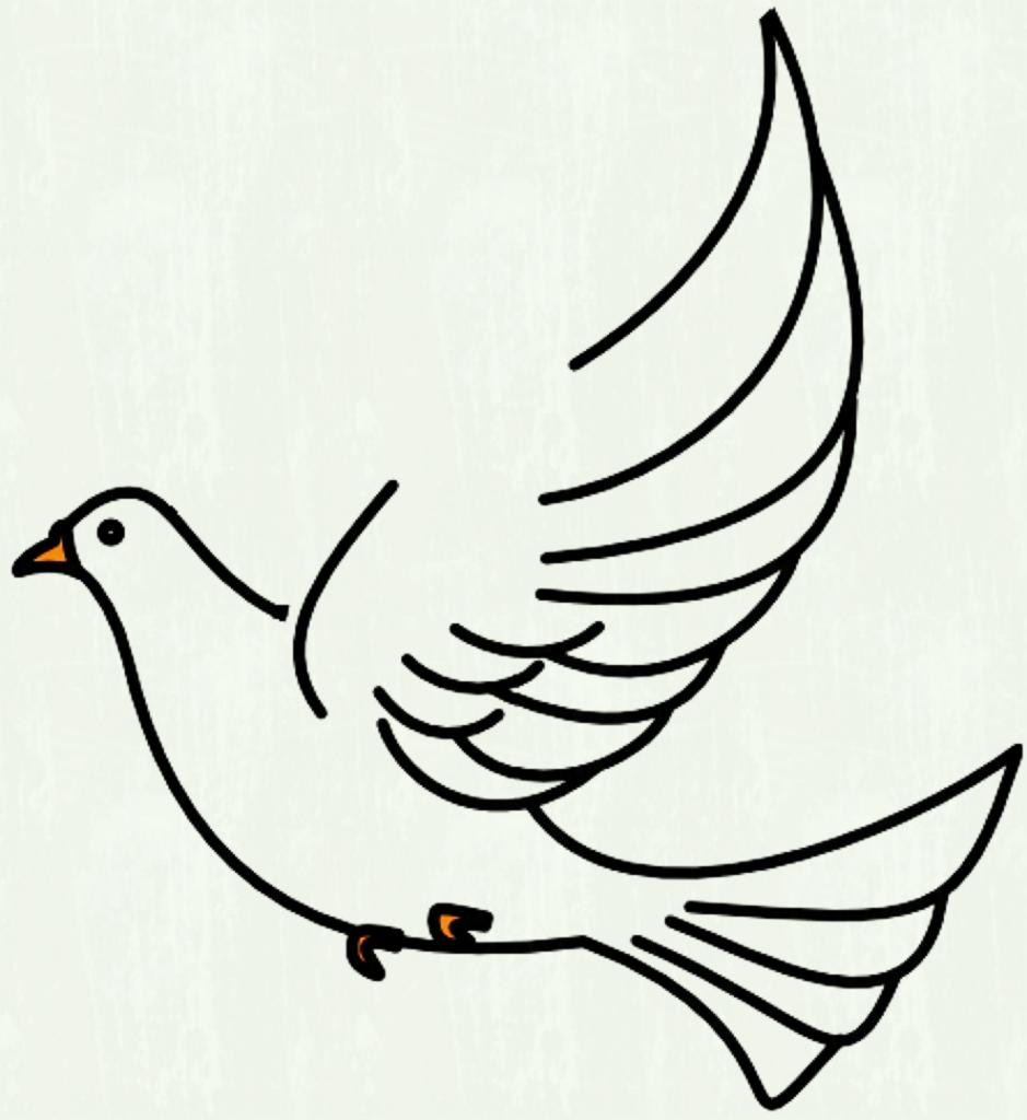 Dove Wings Drawing