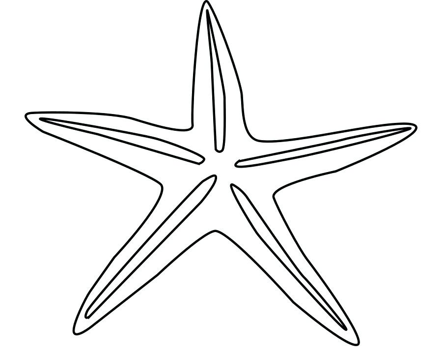 900x720 Starfish Drawing Starfish Drawing Cartoon Clip Art Cartoon