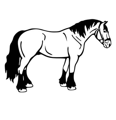 464x480 horse horse wall decal, draft horse decal, girls room, teen room