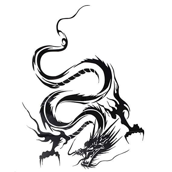 Dragon Body Drawing