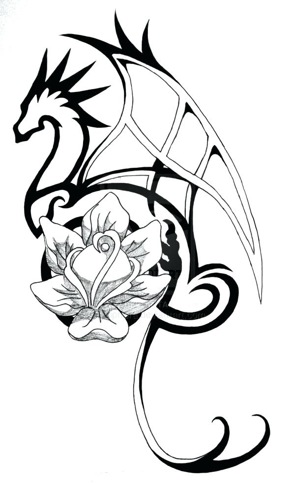 600x982 Dragon Outline Drawing Drawn Water Dragon Line Drawing Welsh