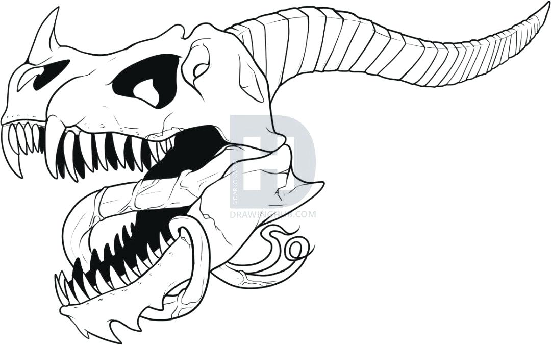 1080x676 Drawing Dragon A Dragon Drawing Dragon Wings Drawing Easy
