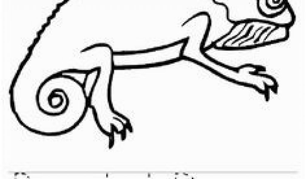 1024x600 Bearded Dragon Coloring Pages Best Animal Line Drawings Images
