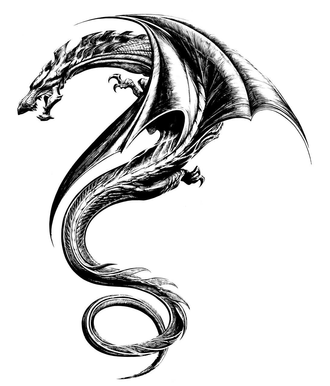 1093x1280 Awesome Dragon Tattoo Designs For Men