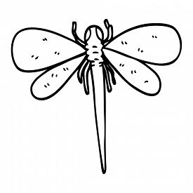 Dragonfly Line Drawing