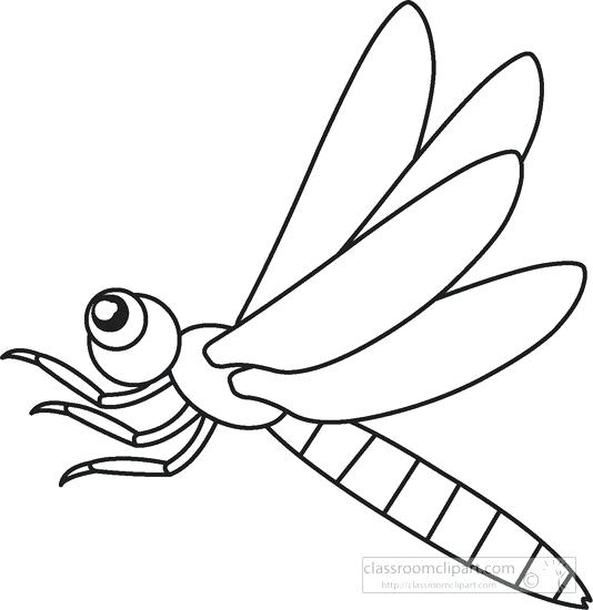534x550 insect outline monochrome outline of dragonfly isolated insect
