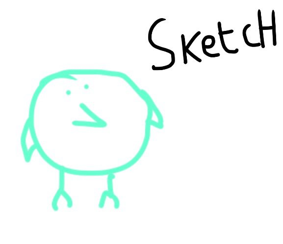 577x498 Drawing A Budgie's Life Amino