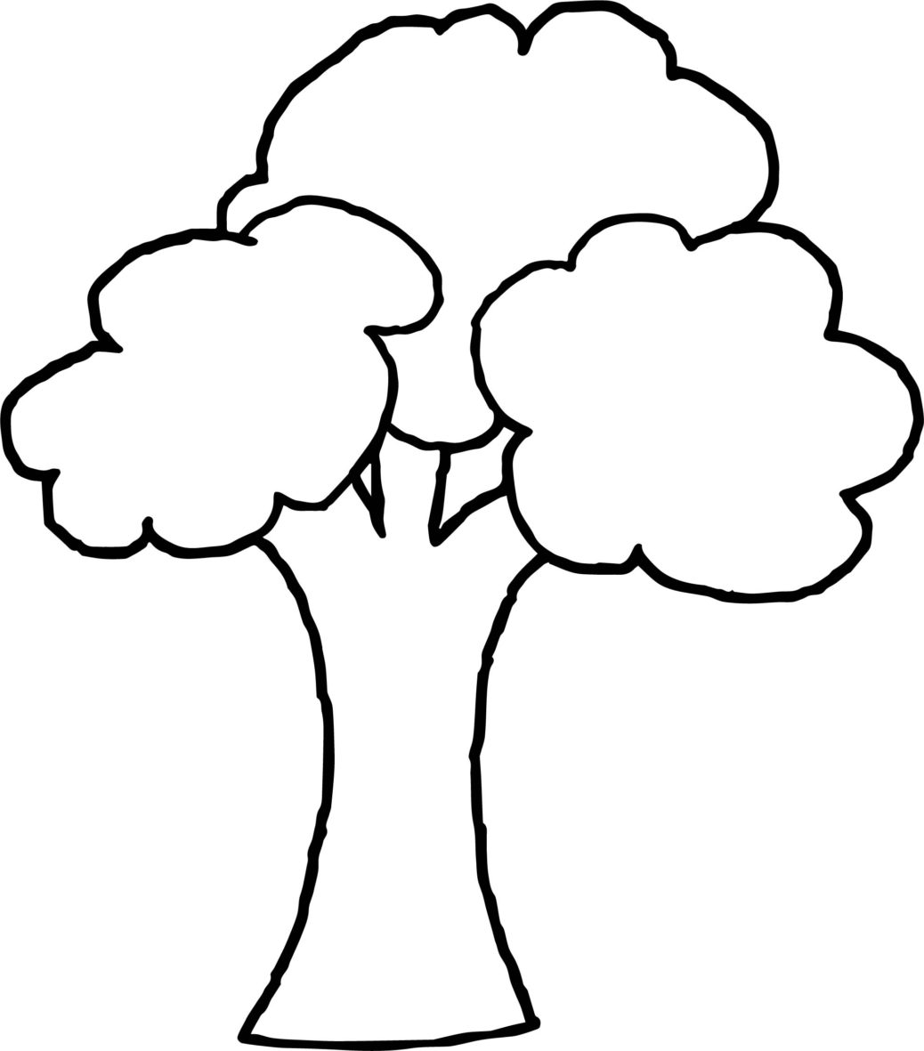 1038x1181 Apple Tree Line Drawing For Personal Use Coloring Book Small