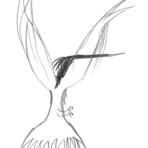 300x300 Black White Sketch Abstract Bird Art Print