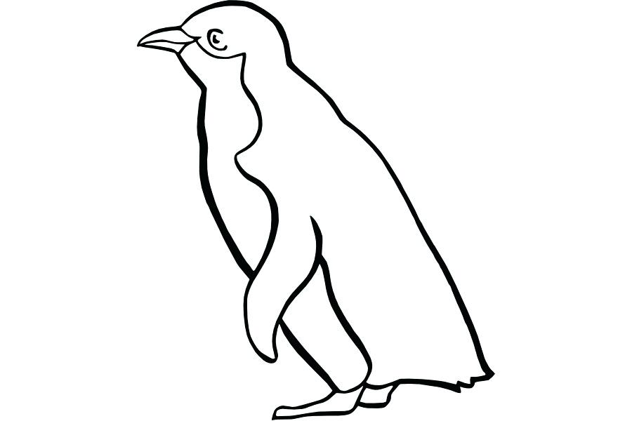 900x600 penguin drawing draw baby penguin pattern penguin drawing game