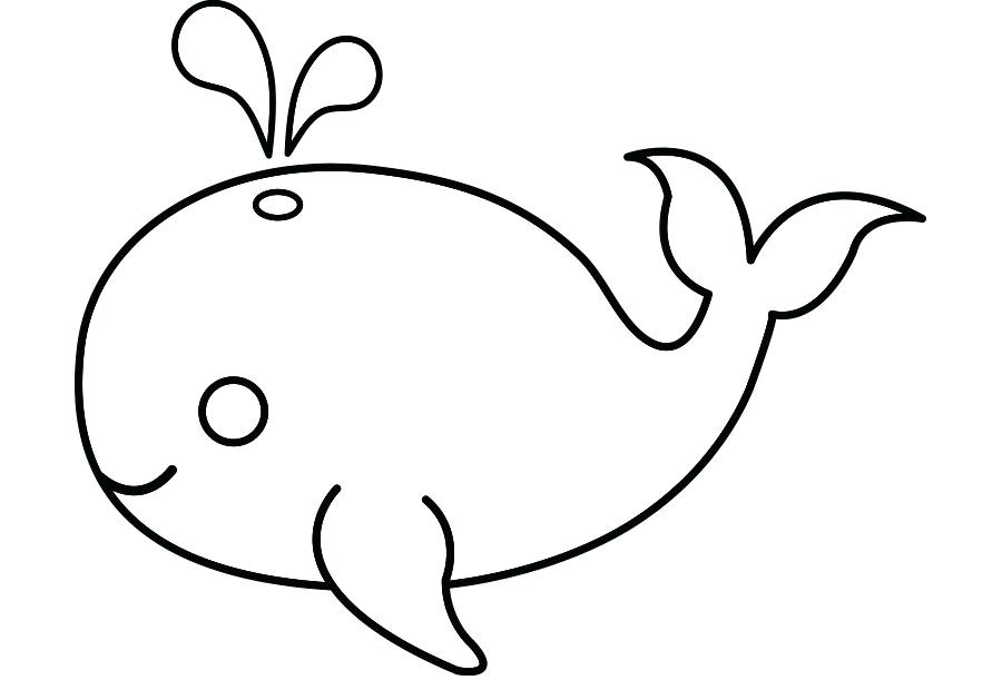 900x620 cute whale drawing cute whale whales clip art cute killer whale