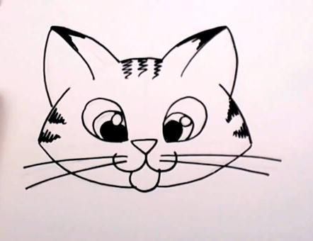 442x340 Draw Cats Cat Face Drawing, Simple Cat