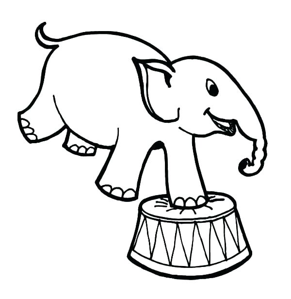600x616 Circus Drawing Circus Background For Free Download