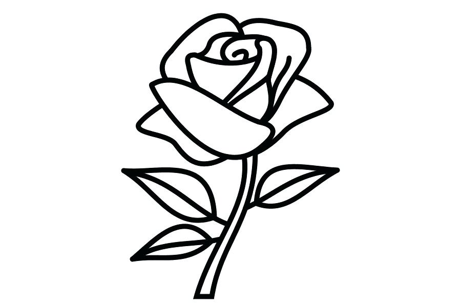 900x600 Drawing Of A Rose Flower Photos Of Simple Flowers Drawing Coloring