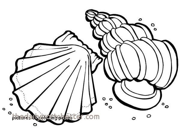 600x442 Elegant Line Drawings Coloring Pages