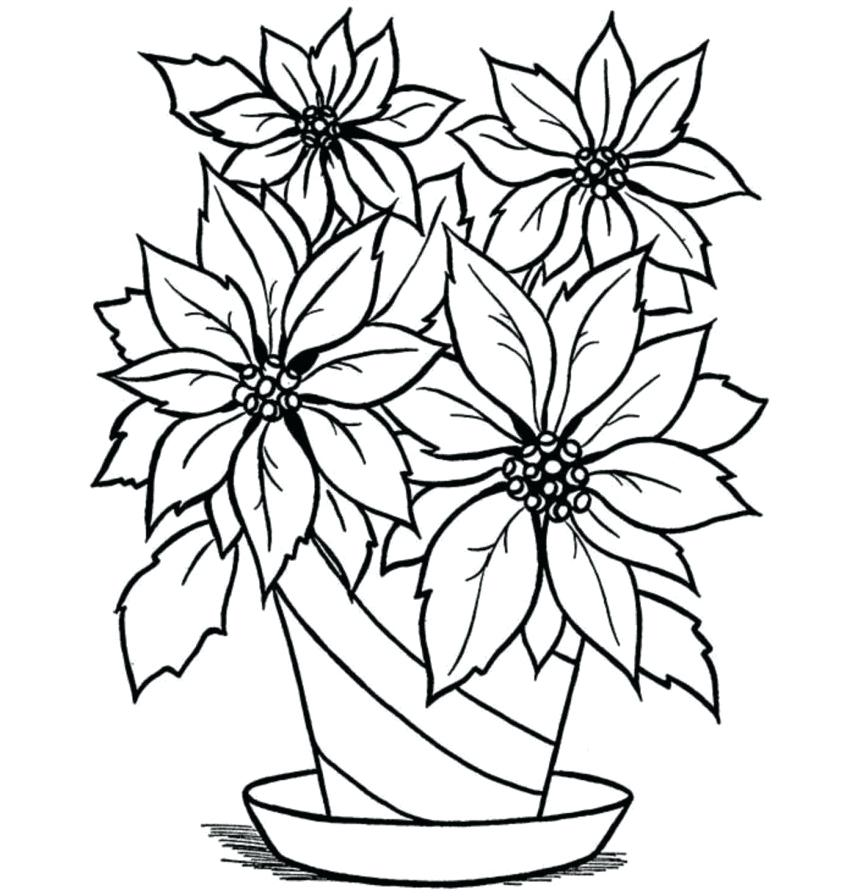 858x896 Flowers In A Vase Drawing