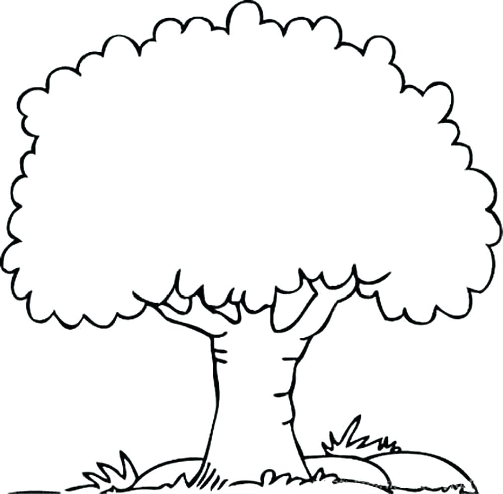 1000x983 Family Tree Drawing Easy