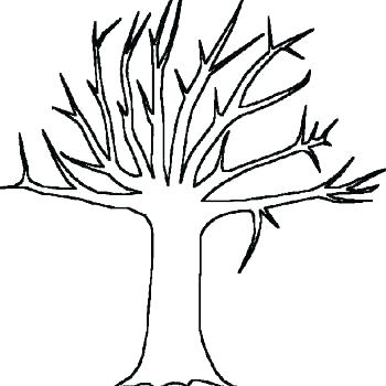 350x350 How To Draw A Tree Tutorial Family Drawing For Kids Template
