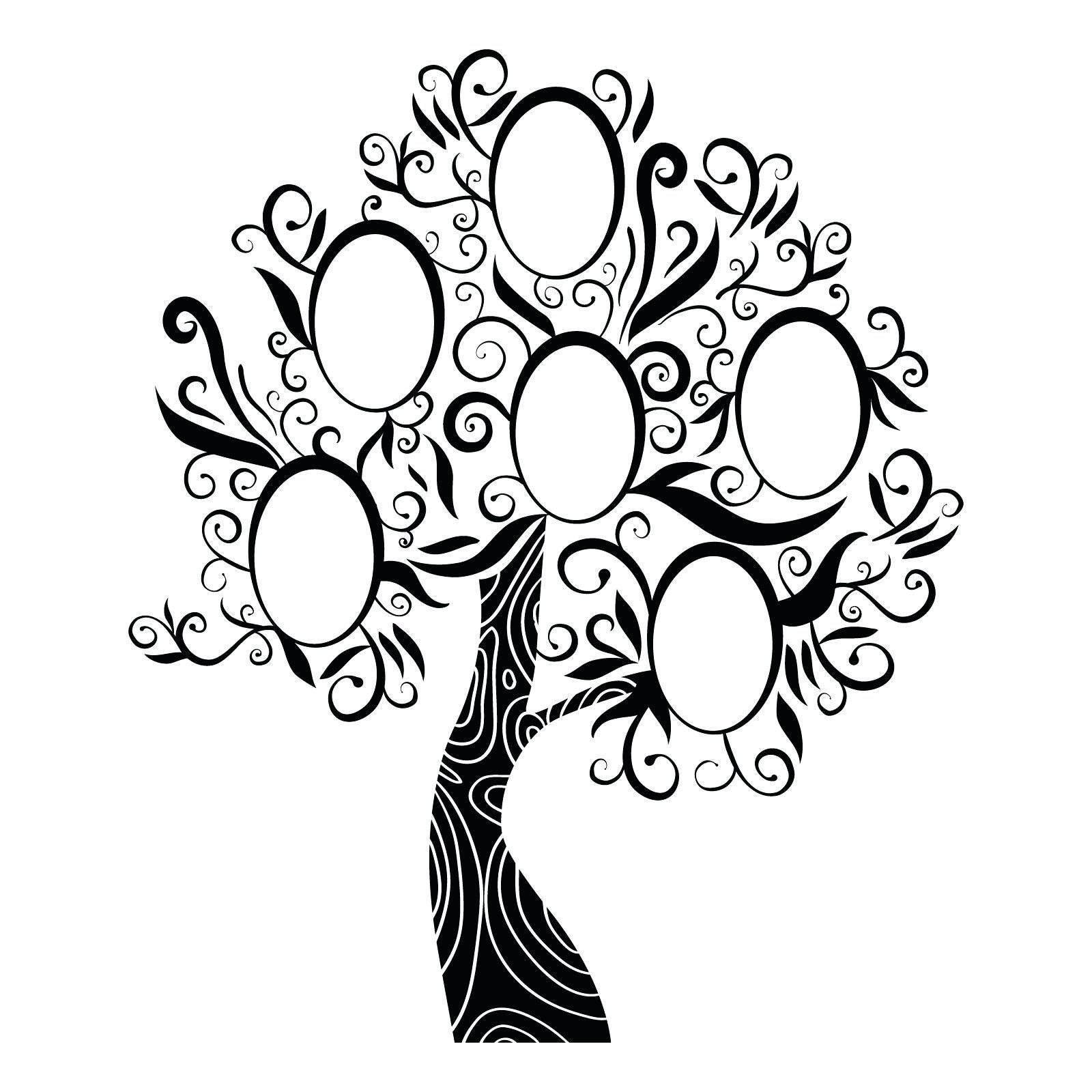 1600x1600 Wonderful Family Tree Clipart Sketch Template Fancy