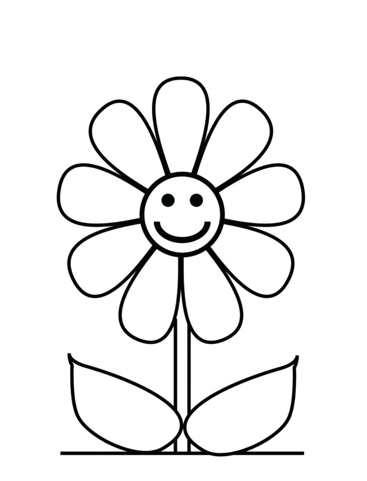 728x952 Easy Drawing Flowers How To Draw Flowers Step