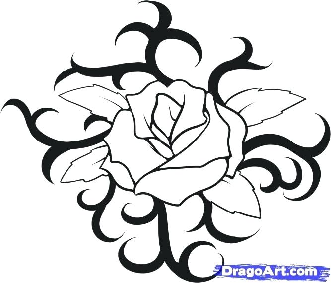 667x570 Howto Draw A Rose How To Draw A Rose Easy How To Draw Roses
