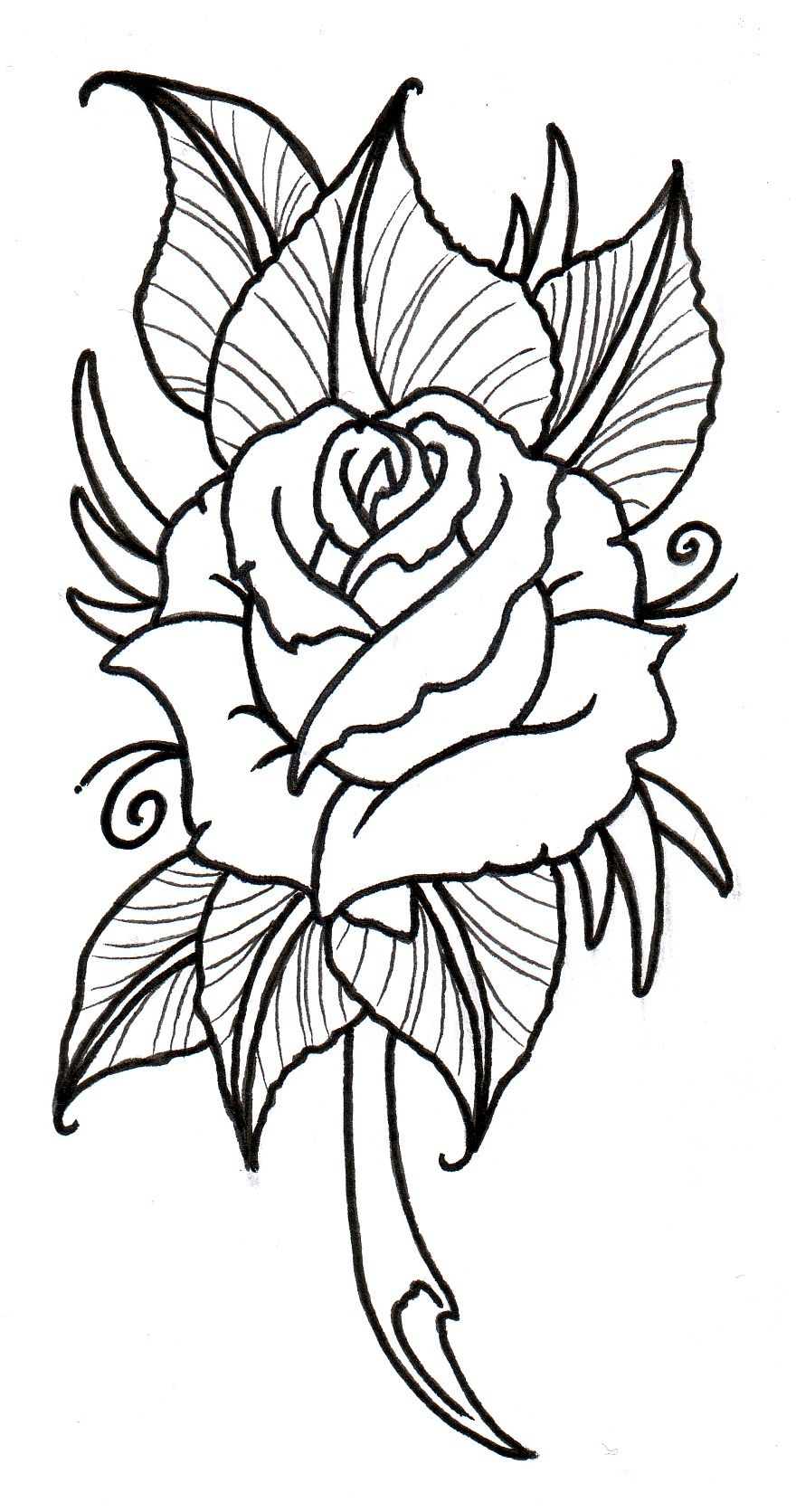880x1671 Neo Traditional Rose Outline