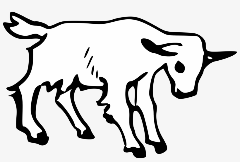 820x553 boer goat pygmy goat anglo nubian goat drawing graphic