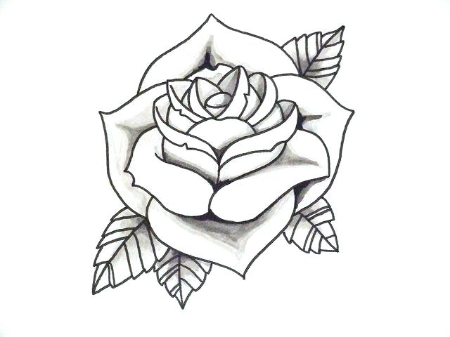 640x480 Easy Rose Drawing Outline Gallery Clip Art Library Simple Stem