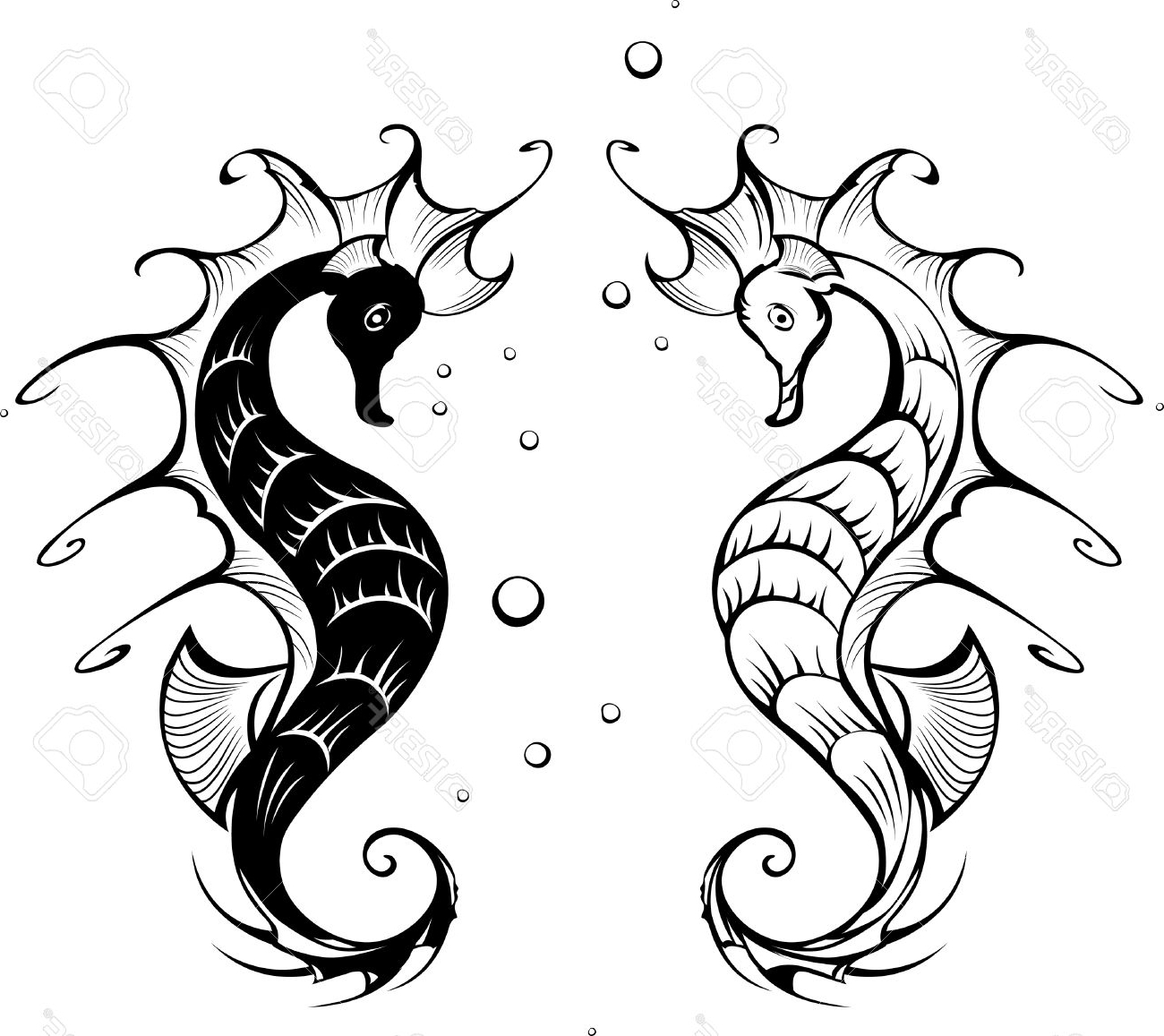 1300x1157 Awesome Seahorse Cartoon Drawing Gallery
