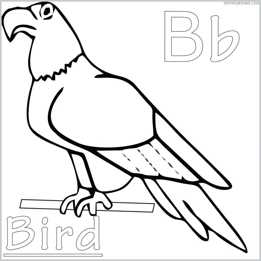 850x850 Coloring Pages Free Printable Bird For Adults Ideas