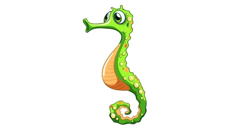 900x520 drawing of a seahorse drawing a seahorse drawing seahorse head