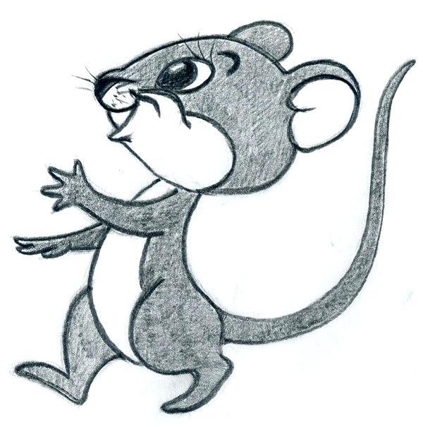 600x605 Easy Drawings Cartoon