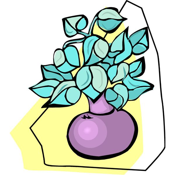 600x600 Easy Still Life Lesson Plan For Elementary Students Includes