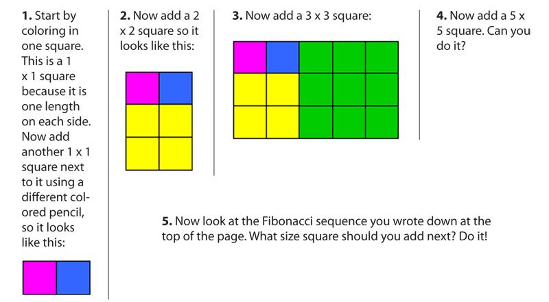 800x441 Fabulous Fibonacci