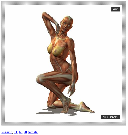 524x553 quickly learn how to draw human body in different poses web