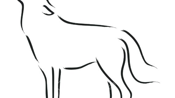 570x320 Wolf Drawings Step