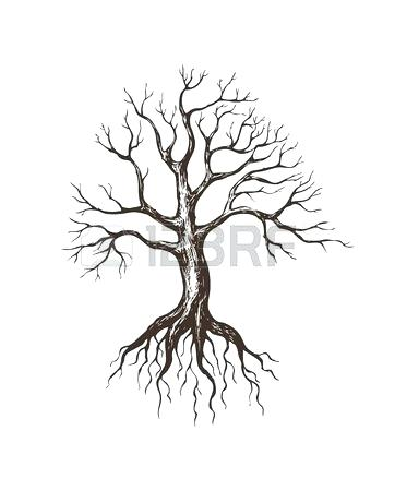 362x450 drawing of a tree with roots best tree designs images roots family